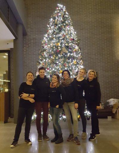 Kerststylisten kerstdecorateurs