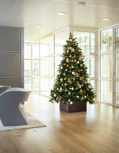 Kerst in Stijl kerstboom huren