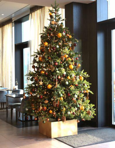Verhuur kerstbomen