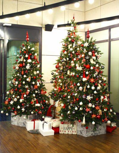 verhuurconcept kerstbomen