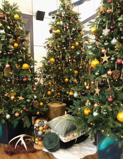 Groep kerstbomen huren