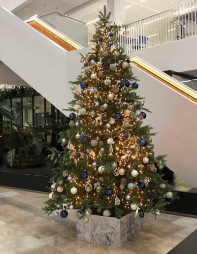 Kerstboom 3 meter hoog